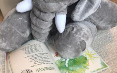 Wie die alte Eiche dem LIEBLINGSFACH Elefanten erklärt, wieso auch er Wurzeln haben kann
