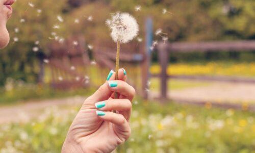 Stressfrei sein durch bewusstes Atmen